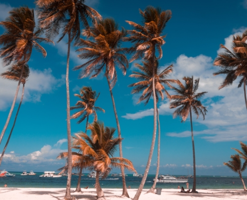 things to do in the dominican republic